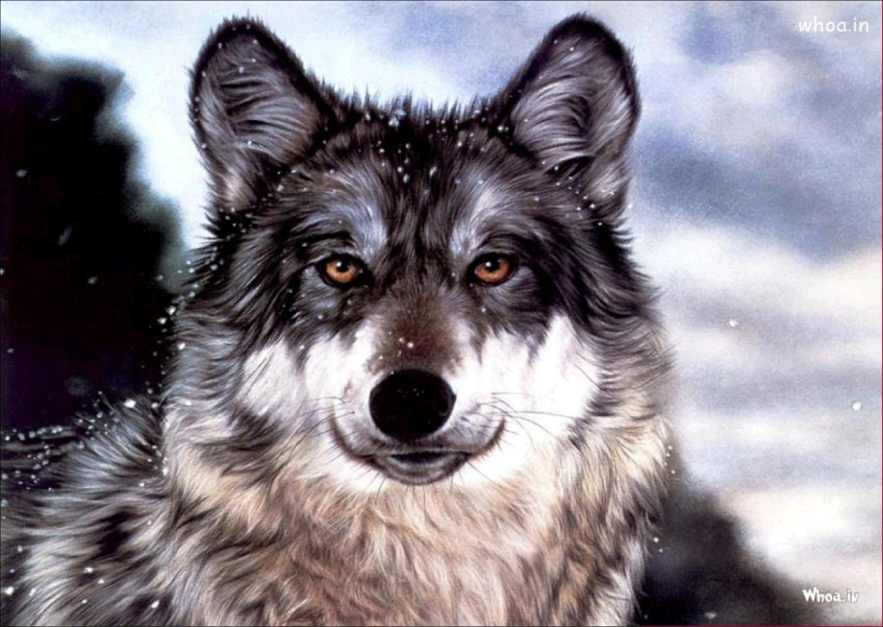 Diamond Painting Wolf Rhinestone Embroidery Cross Stitch Home