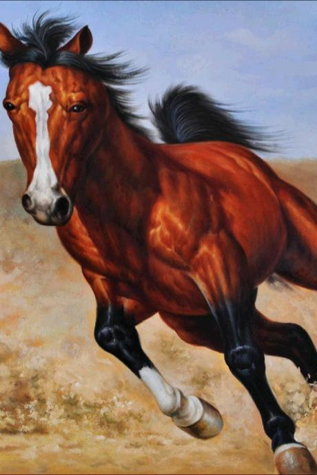 diamond painting horse animal decoration home bedroom decor diamond craft